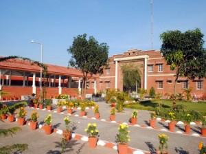 prisoner-of-sudhowala-jail-dehradun-54672dd6adc93_exlst