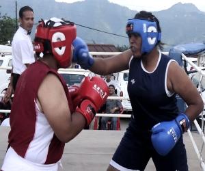 boxer-5248415428a0f_exl